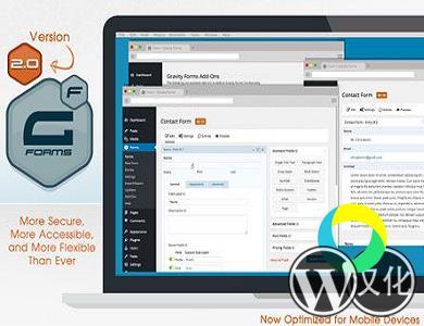 WordPress插件-Gravity Forms V2.4.8.3汉化版已更新
